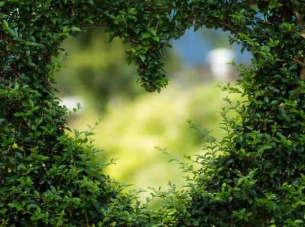 Verduurzaam je event en de impact ervan